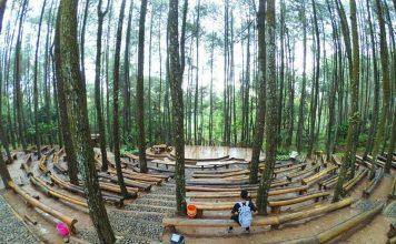 panggung kesenian hutan pinus mangunan