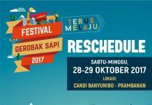 festival gerobag sapi
